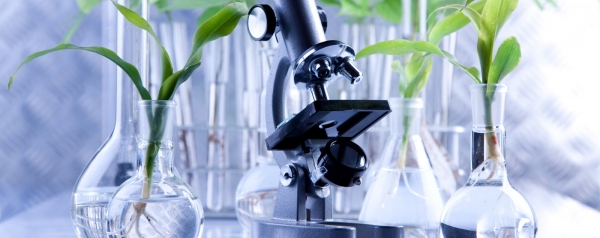 private_label_skincare_formulation_-using_science_nature_2